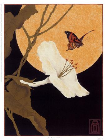 Anita-munman-moonflower-and-moth