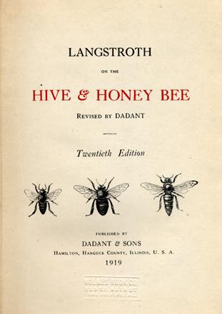 Bee 1919