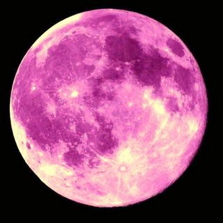 Enjoy The Pink Moon Tonight