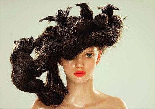 Hairnest